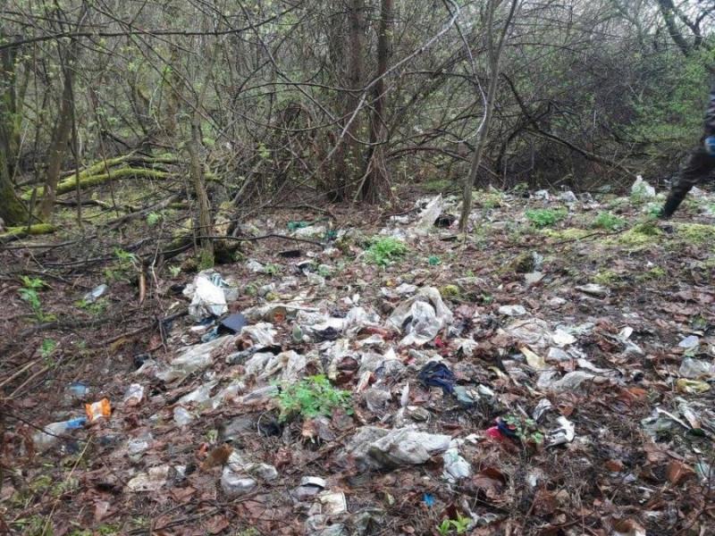 Прибирання лісу в Ківерцях показали на каналі ICTV