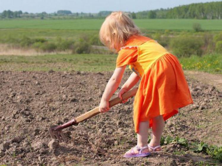 У Ківерцях застерегли від незаконної дитячої праці