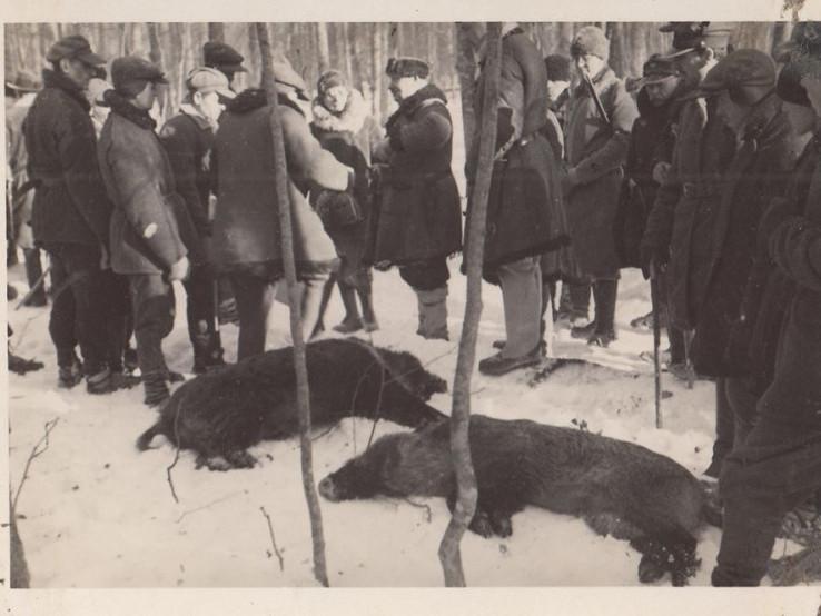 Полювання у минулому столітті