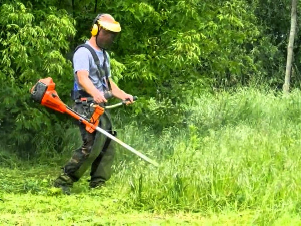 Скошування трави / Фото ілюстративне