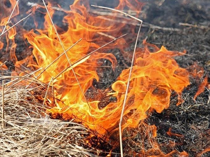 Вогонь/Фото ілюстративне