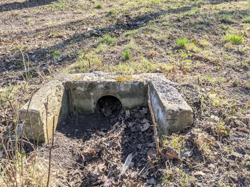 Фото стічної труби на території парку