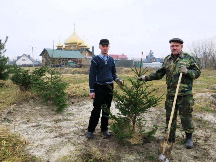 Висадка дерев біля храму