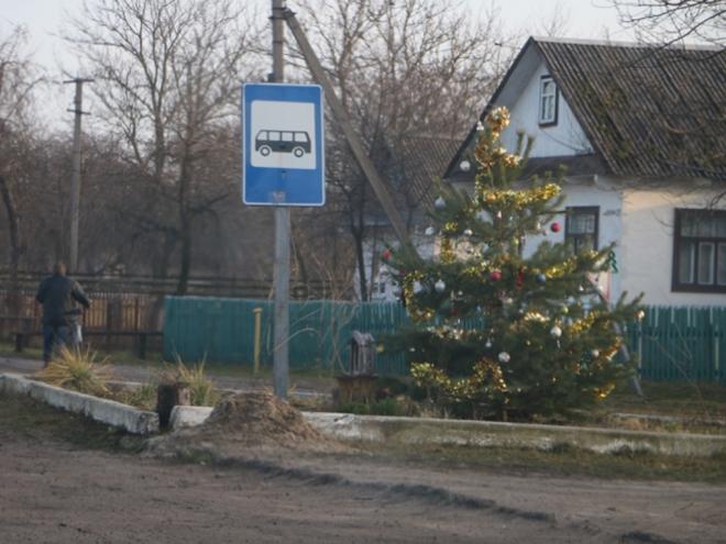 Ялинка на журавичівській зупинці