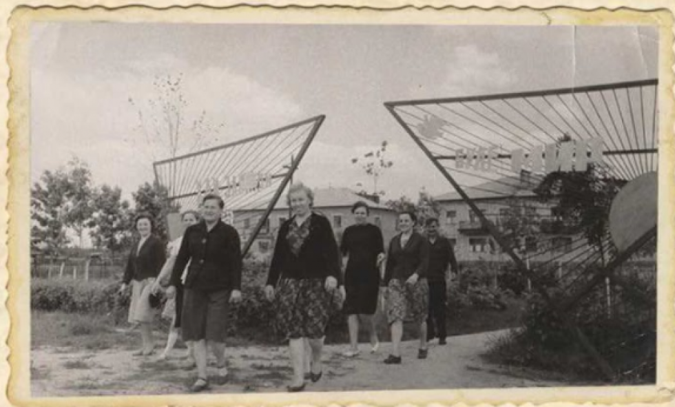 На території підприємства. 1965 рік
