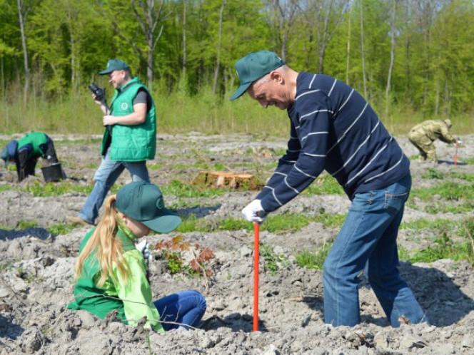 Голова Волинської ОДА садить ліс у Сокиричах