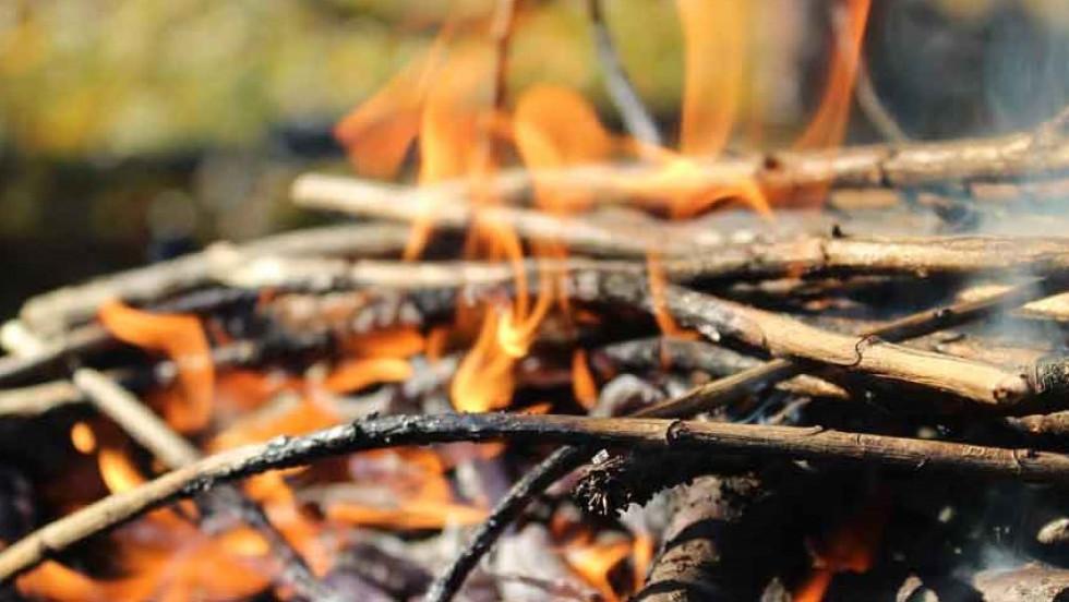 Вогонь - небезпека для природи