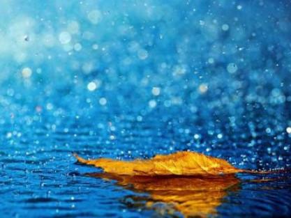 Погода в Ківерцях 7 вересня