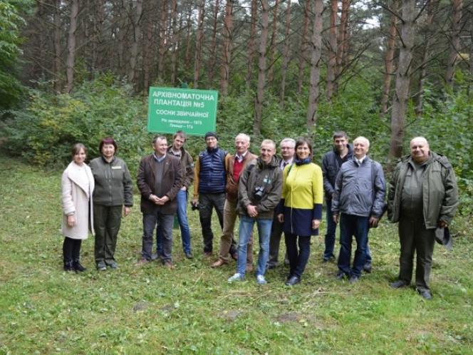 Польські науковці на Ківерцівщині вивчали досвід вирощення елітних дерев