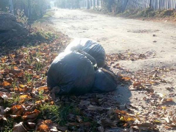 У Ківерцях мішки зі сміттям залишили на узбіччі дороги