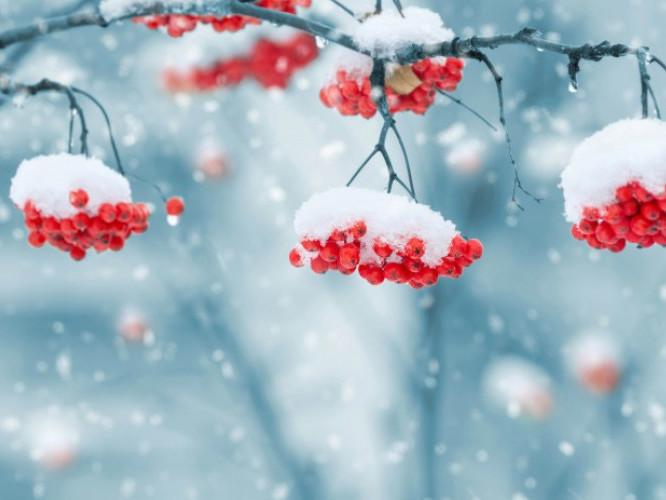 Погода в Ківерцях 02.12.2018