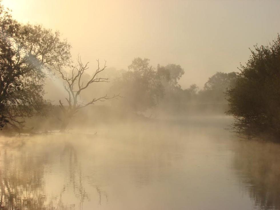 Туман злився з водоймою